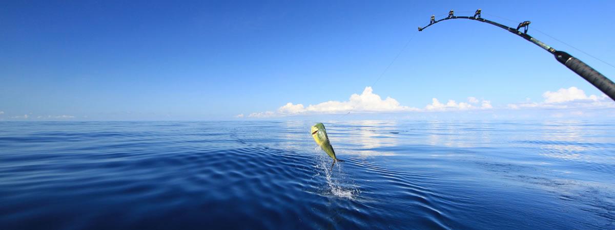 fishing-trip-cruise-banner
